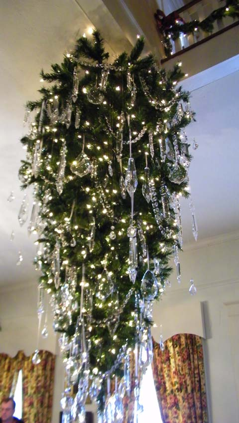 Hanging Christmas Trees Upside Down